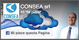 Visiona il profilo di CONSEA SRL su facebook